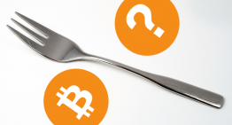 Understanding Cryptocurrency Forks