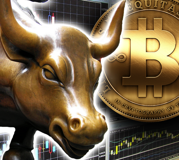 Will We Have A Crypto Bull Run In 2019?